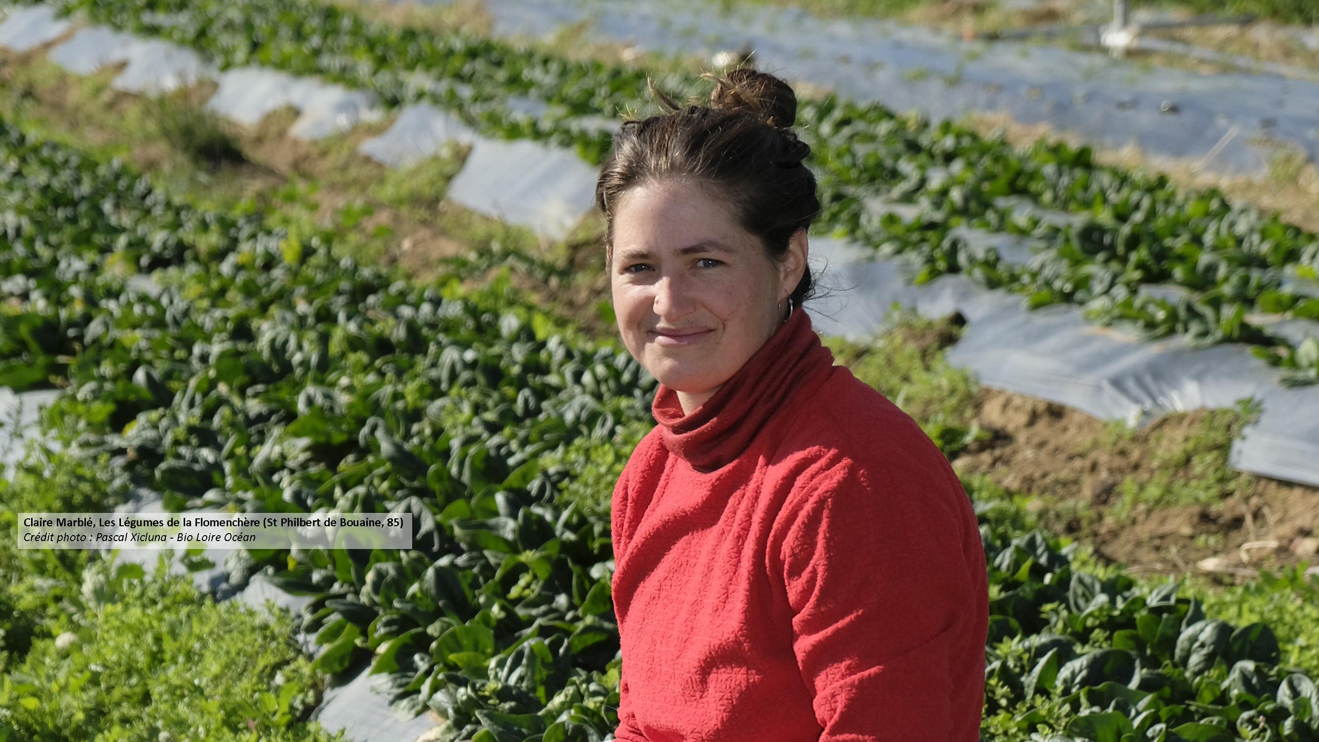 Des fruits et légumes pour un commerce équitable